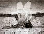 Silver Bronze Snakeskin Rabbit Pose Yogi Angel Yoga Art Print Signed on Back by Deprise Brescia