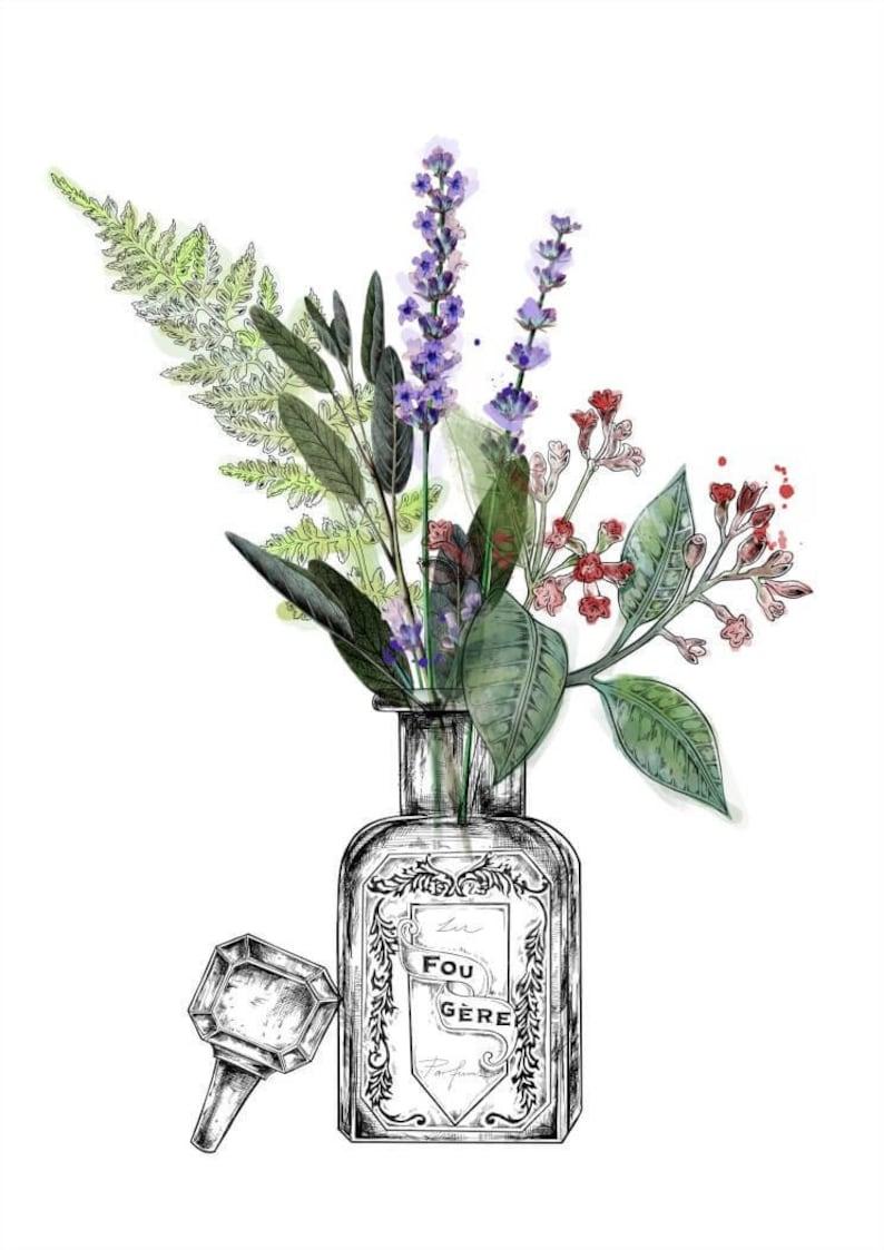 Les Parfums A4 Art Print Fougere Florale Chypre Etsy