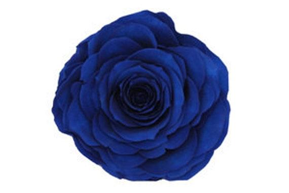 Rosas Azules Hermosas Natural Preservados Conservados A Rosa Etsy