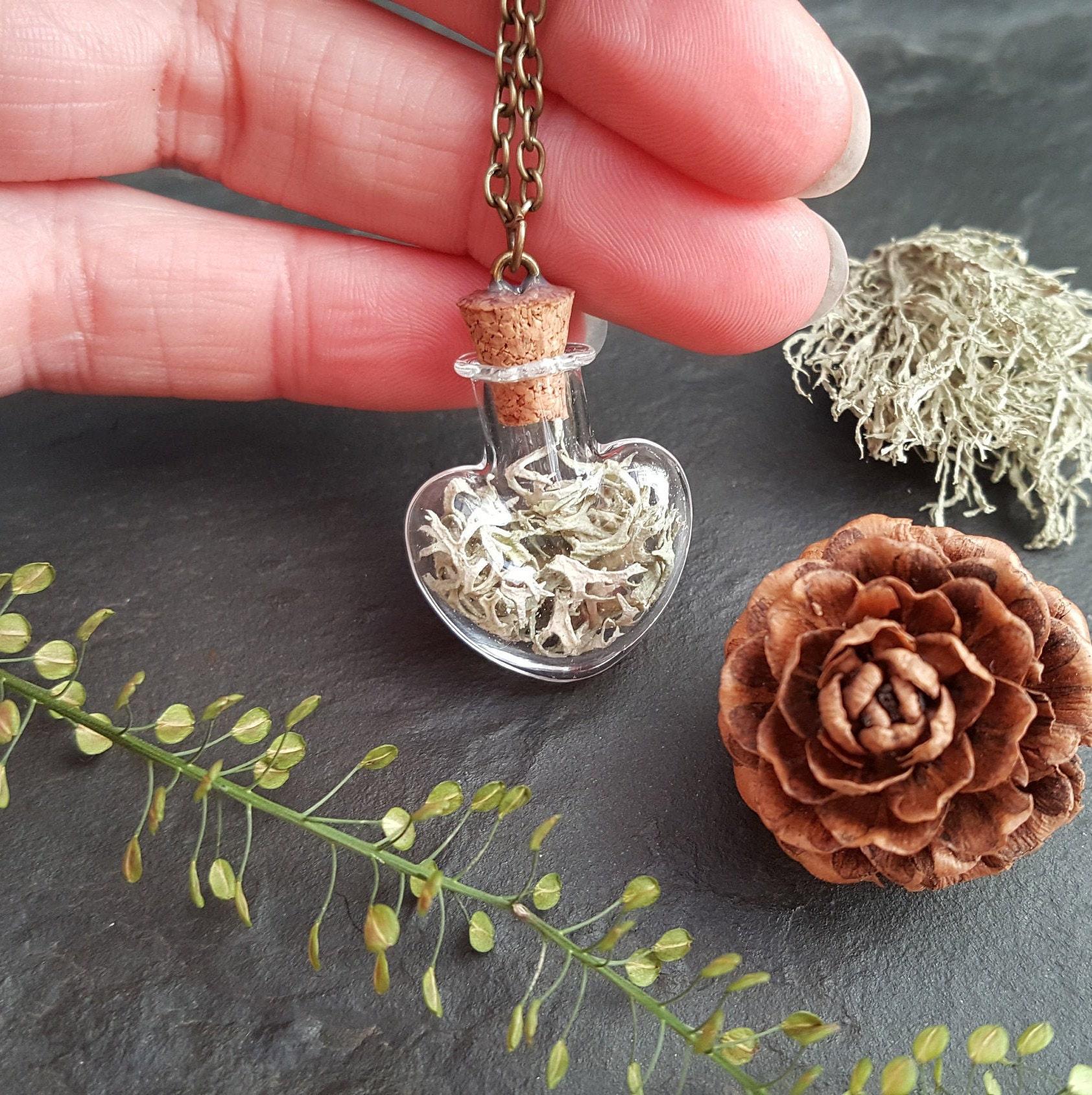 hydrangea Natural Jewelry Terrarium necklace Botanical Real plant jewelry