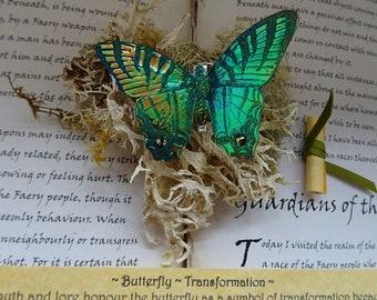 Shimmering Butterfly Brooch ~ Green Flash
