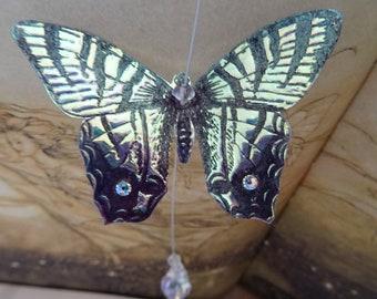 Butterfly Suncatcher ~ Iridescent