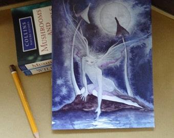 Moonlight Wish A5 Notebook