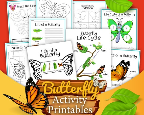 Butterfly Printable Worksheets for Kids  Educational