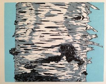 Birch Trunk II
