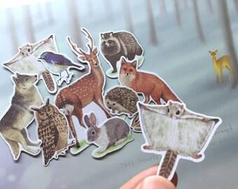 Stickers Kingdom
