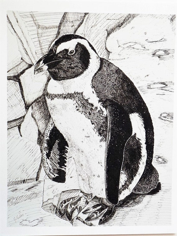 Madagascar Penguins Giclee Canvas Picture Childrens Art