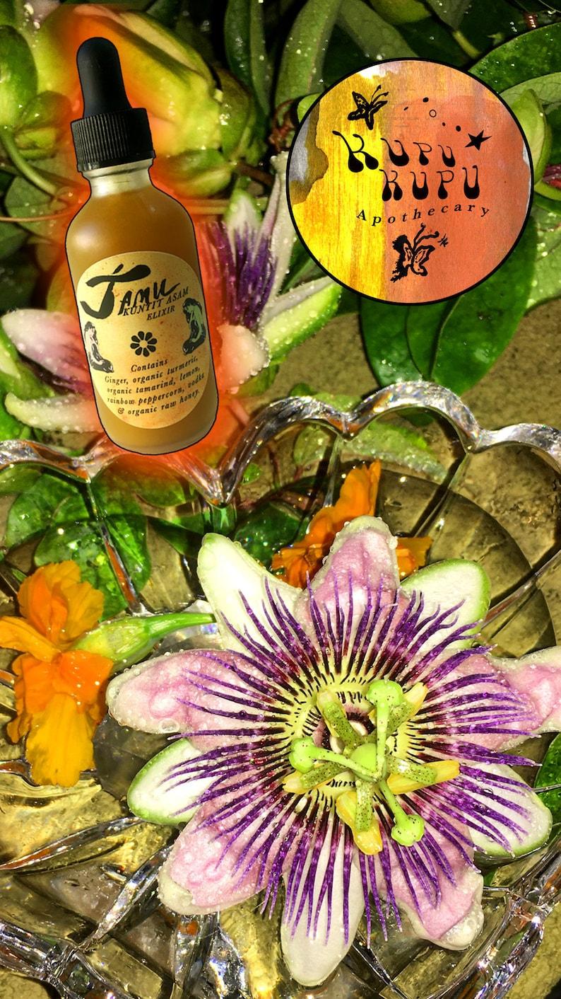 JAMU KUNYIT ASAM Elixir  Immune Boosting Anti Inflammatory image 0