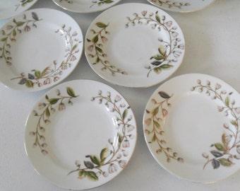 Mark & Gutherz Carlsbad Set Of Seven Salad Plates