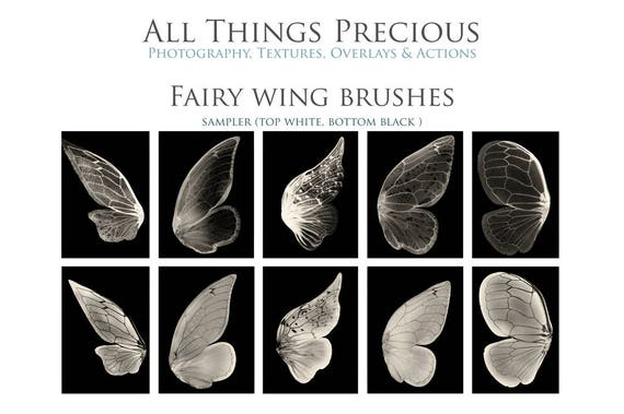 21 Fine Art Digital FAERY WINGS And SPARKLES Photoshop Brushes Etsy