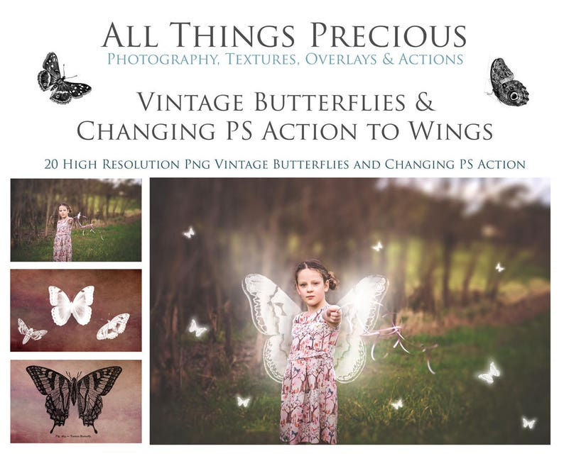 20 Fine Art High Res Png VINTAGE BUTTERFLIES Clipart and image 0