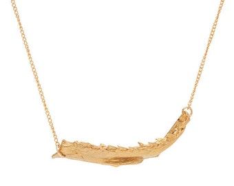 Partial Shark Jaw Necklace