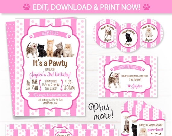 Cat Party Invitations - Kitten Birthday Party Invitations - Cat Party Supplies - Kitten Party Favors - Cat Party Ideas - Cat Party Decor