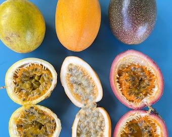Lilikoi SEEDS/3 Types/Purple Lilikoi/Yellow Lilikoi/Jamaican Lilikoi/Maui Seeds/Fruit Seeds/Home Garden/Passionfruit Seeds