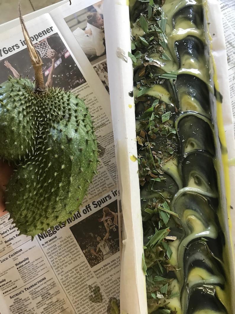 SoursopAnnona muricataGraviolaSEEDS Maui SeedsFresh Maui Grown SeedsTropical FruitHawaii Fruit SeedMaui grownHealth TeaHerbal Tea