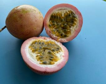 Lilikoi Yellow x Purple SEEDS/Hybrid between Yellow + Purple Passionfruit SEEDS/LILIKOI/Maui Seeds/Fruit seeds/Exotic Tropical Fruit Seeds/