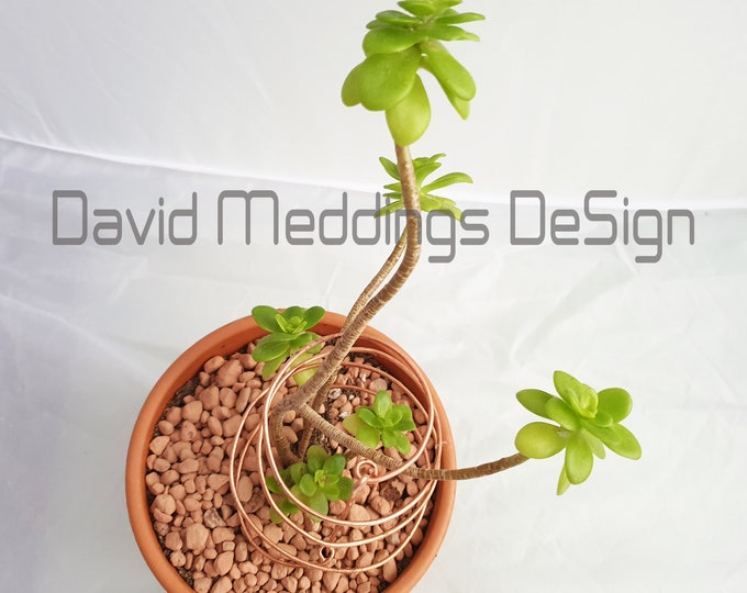 Copper spiral plant  holder pot 5x wire supports props  -  for indoor gardening terrarium furniture