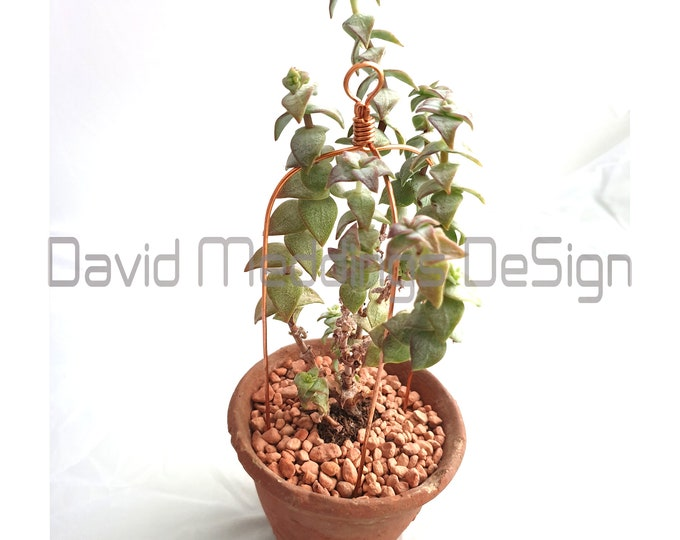 5x Copper tripod plant pot supports props to keep your greenery in order -  for indoor gardening terrarium furniture