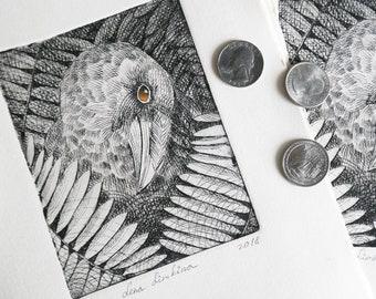 Yellow-eyed raven. Handprint, Etching