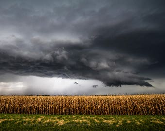 Corn Field Photography Print - Fine Art Picture of Storm Over Withered Corn Field in Southern Kansas Country Home Decor 4x6 to 30x45