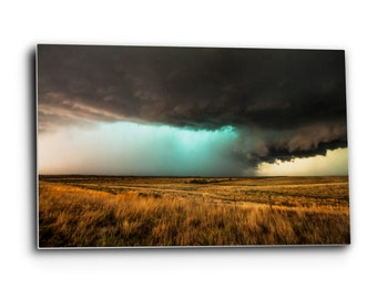 Cow Photography Metal Wall Art Black and White Aluminum Print of Black Angus Cattle and Storm on Horizon in Kansas 8x10 to 24x36