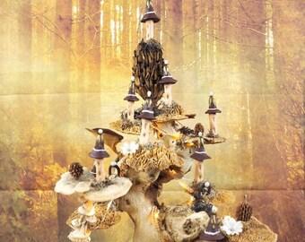 Desert Fairy tree