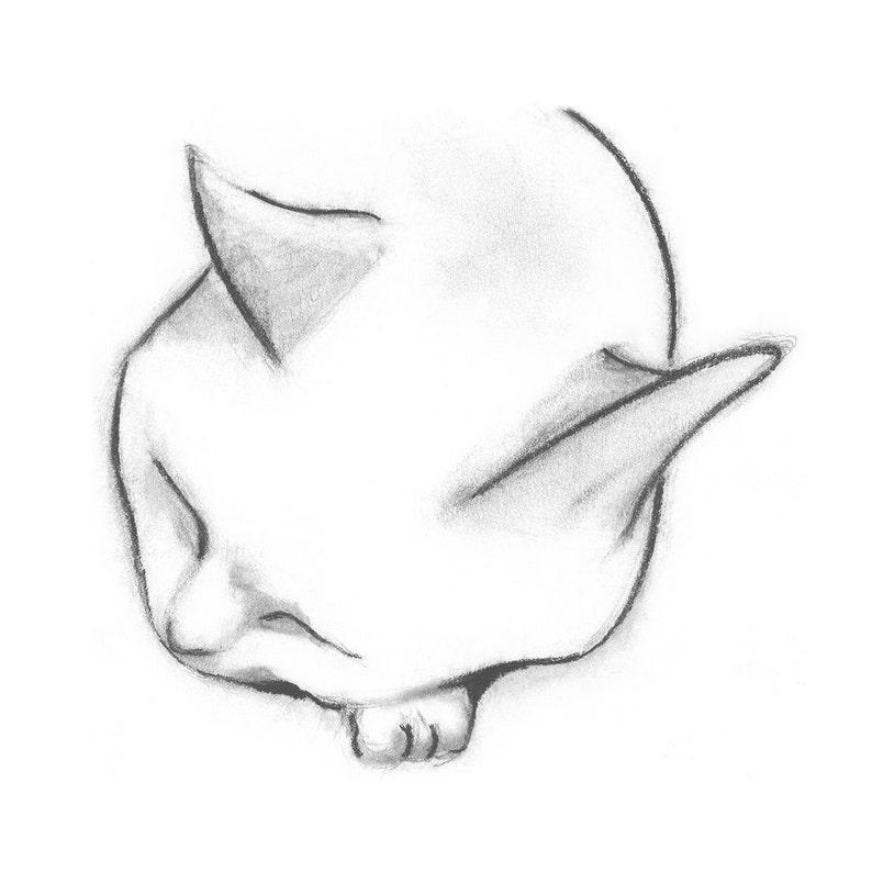 Four Cat Card Fine Art Cat Greeting Cards Peaceful Cat