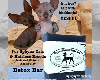 Sphynx Cat Bath Singles