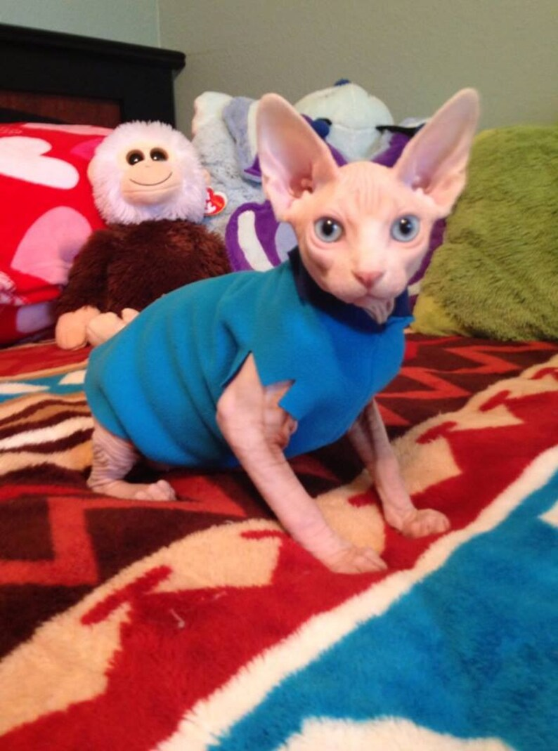 Clothes for Kittens Sale Pack: Buy 3 Fleece EZ Sweaters, 4th in pack is  free  Sphynx Cat Kitten Clothes, Adjustable, Cat Dad s Day