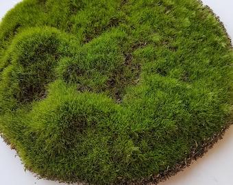 Artificial moss, moss pad terrarium rocks woodland wedding party forest fake grass fairy garden wood theme moss mat mini terrarium fake moss