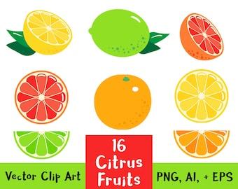 16 Citrus Fruits, Fruit Clipart, Citrus Clipart, Lemon Clipart, Lime Clip Art, Orange Clipart, Grapefruit, Summer Clipart, Vector Clipart