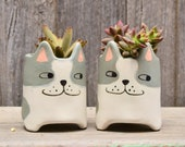Quirky Small Grey and White 39 Bentley 39 Cat Planter