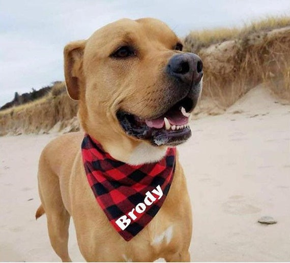 Tie Dye Dog Bandana Custom Dog Bandana Pet Bandana Dog Neckerchief Snap On Tie Dye Dog Bandana Personalized Dog Bandana