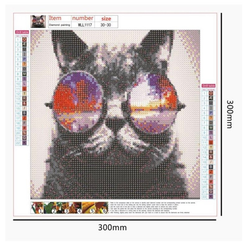 fast shipping full drill cool cat diamond painting kit round drill 30x30cm free shipping US Seller