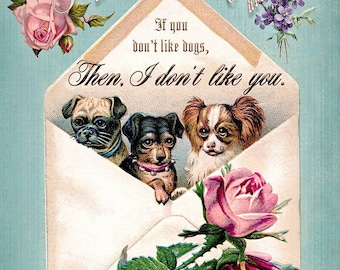 Then, I Don't Like You 8x10 Print