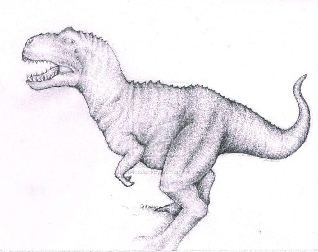 Dinosaur tyranosaurus rex trex pencil drawing high quality signed a4 print