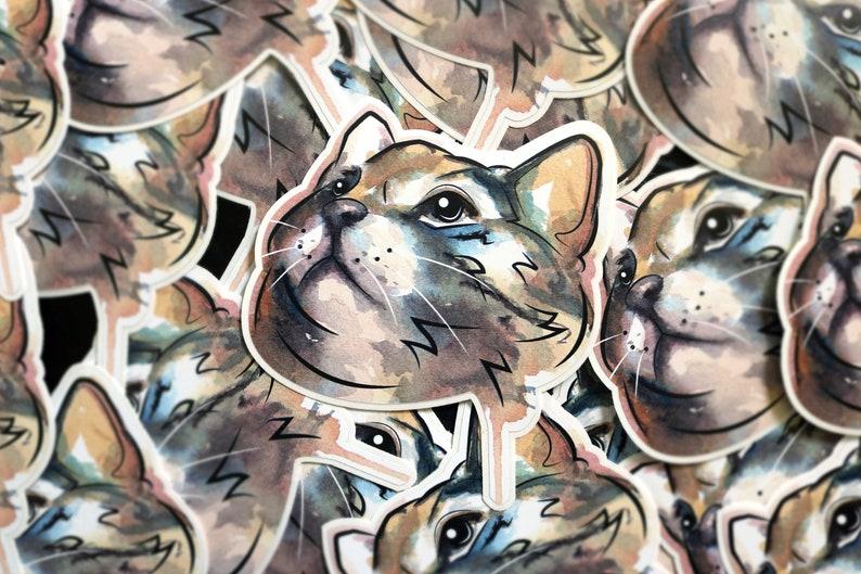 Cat Sticker  Dexter image 0