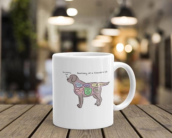 Anatomy Of A Chocolate Lab Funny Labrador Retriever Mug Etsy