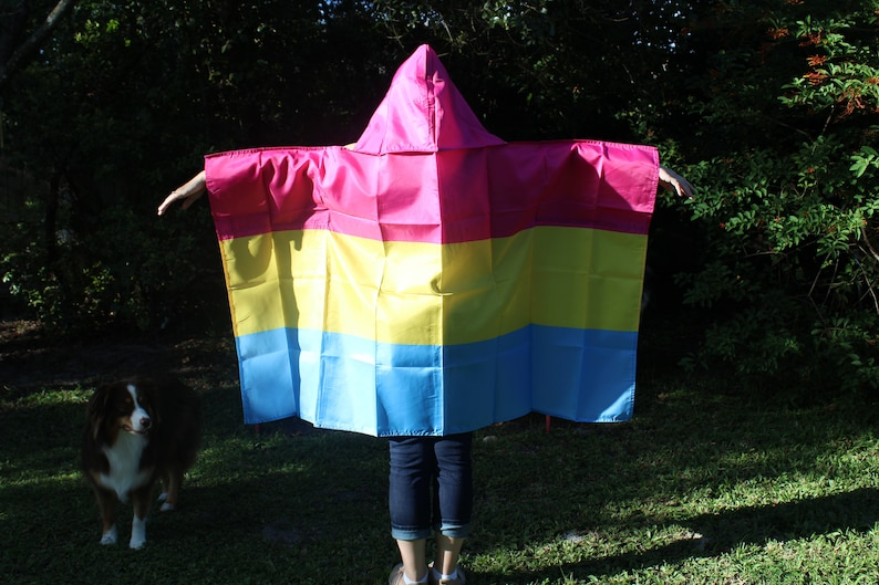 LGBTQA Pride Pansexual Hooded Cape image 0