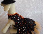 Halloween dog dress, Thanksgiving dog dress, Fancy dog dress, cotton dog dress, TuTu dog dress, Ready to Ship medium 17 quot chest JSACUTABOVE