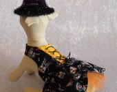Halloween dog dress, Fancy Dog Dress, cotton dog dress, Ready to Ship, Skeletons, fancy dog dress, size small Chest 13 3 4 JSACUTABOVE