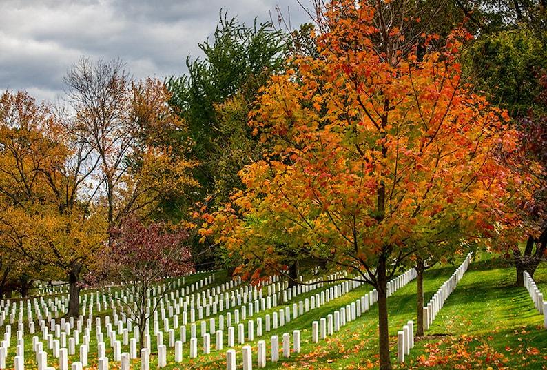 Arlington National Cemetery Grave Stones Military Cemetery image 0