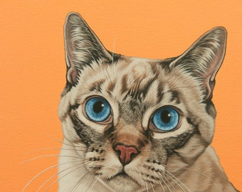 Custom Hand Painted Pet Portrait, 12x16 Siamese Cat Painting, Siamese Mix Cat Portrait, Mother's Day Gift for Cat Lover, Siamese Cat Art