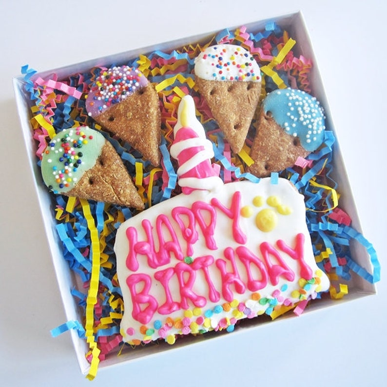 Happy Birthday Cake And Ice Cream Dog Treat Assortment Barkday Treats Iced TreatsGotcha Day TreatsBirthday