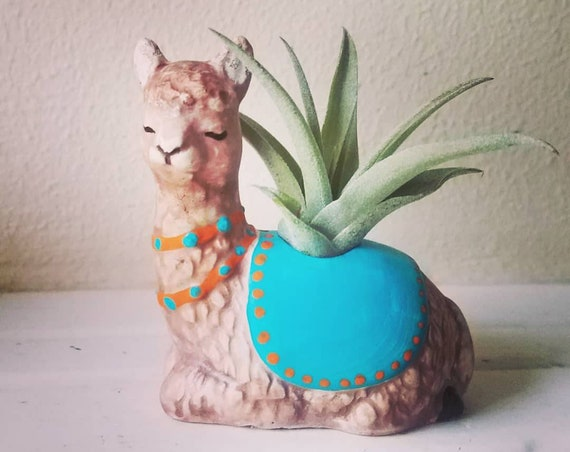 Llama planter, air plant holder, Llama gift, desk decor , planter with plant