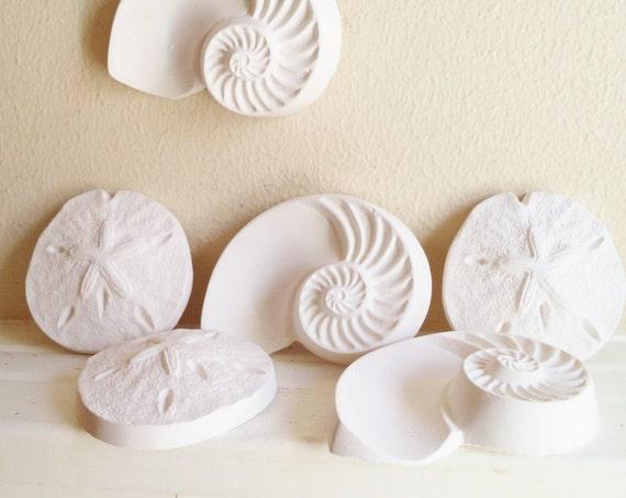 Sea shell wall sculptures, nautical wall decor, sand dollar, nautilus shell, beach house art