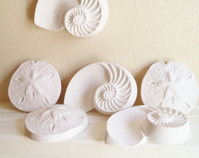 Sea shell wall sculptures, nautical wall decor, sand dollar, nautilus shell, beach house art