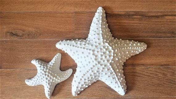 Ready to ship, Starfish wall decor, wall hanging starfish, beach house art, nautical art, set of starfish, bumpy starfish, sea shells