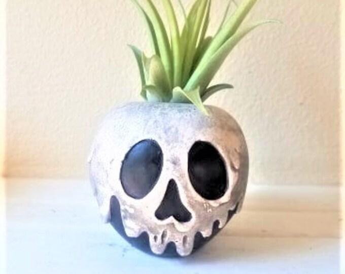 Poison apple planter, air plant holder, desk planter, villains, Snow White gift, just one bite, black and white