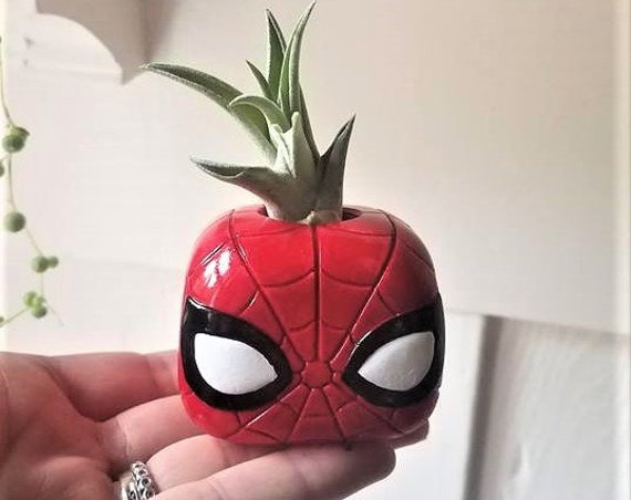 Spider Man gift, air plant holder, Avengers gift, Marvel super hero inspired gift, geek chic, nerdy gift